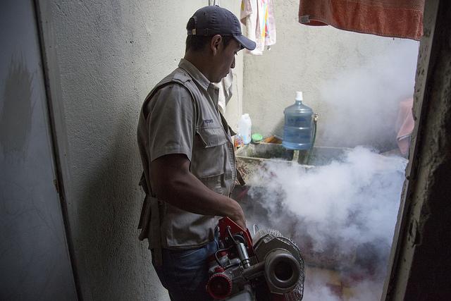 Prévention : le ministère de la Santé tente d'éradiquer les moustiques au Guatemala.